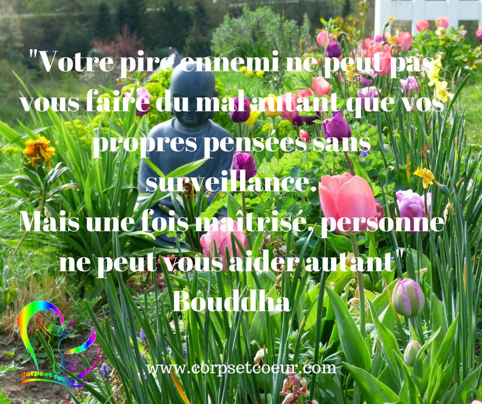 citation boddha , un message par jour corpsetcoeur