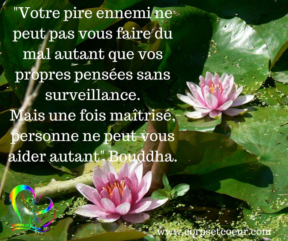 citation bouddha pire ennemi